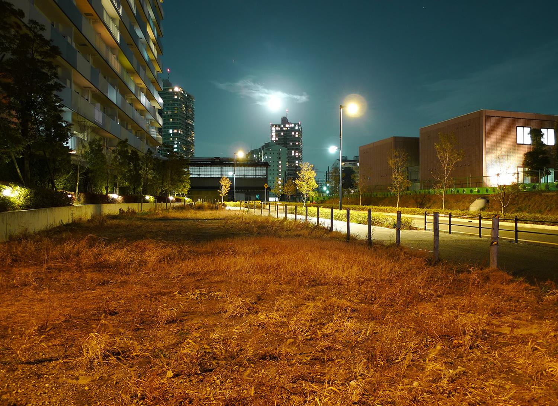新川崎の夜