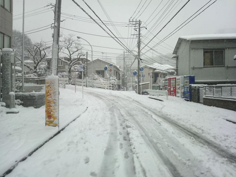20140208-雪が降り積もる2