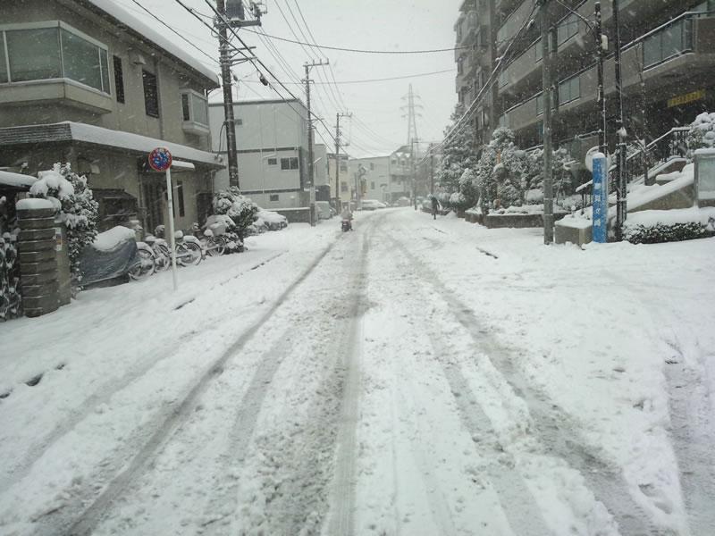 20140208-雪が降り積もる