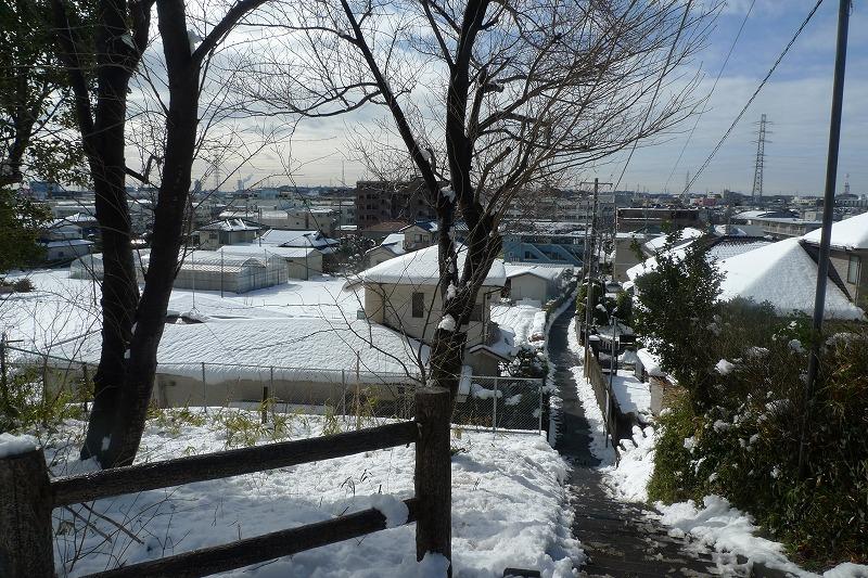 加瀬山の山道