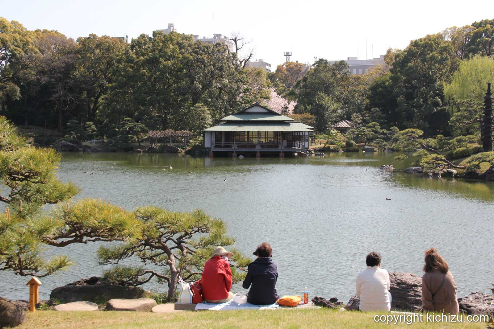 池を眺めながら休憩